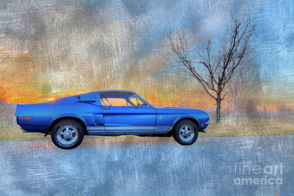 Autosport Wall Art - Photograph - 1968 Shelby Mustang  by Larry Braun