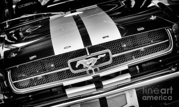 Wall Art - Photograph - 1970 Mustang Monochrome by Tim Gainey