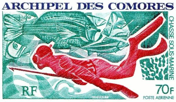 Reef Diving Digital Art - 1972 Comoro Islands Spearfishing Postage Stamp by Retro Graphics