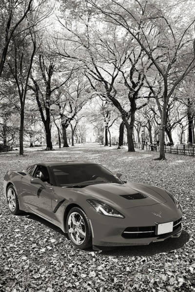 Photograph - 1974 Chevrolet Corvette In A Park In Black And White 3466.01 by M K Miller