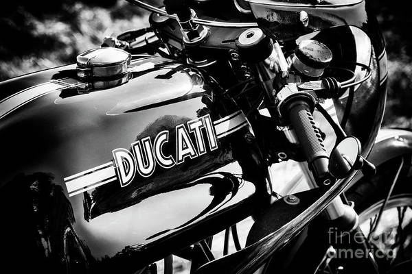 Photograph - 1974 Ducati 750 Sport by Tim Gainey
