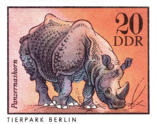 Wall Art - Digital Art - 1975 East Germany Zoo Rhinoceros Postage Stamp by Retro Graphics