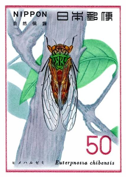 Fauna Digital Art - 1977 Japan Cicada Postage Stamp by Retro Graphics
