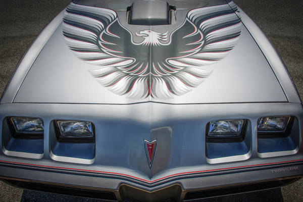 Wall Art - Photograph - 1979 Pontiac Trans Am Hood Firebird -0812c by Jill Reger