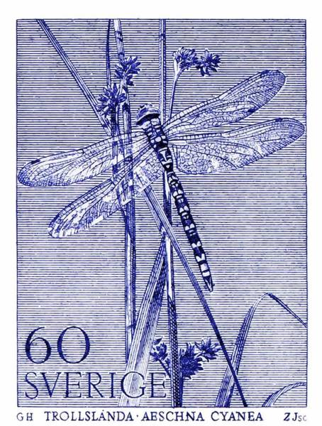 Dragonflies Digital Art - 1979 Sweden Dragonfly Postage Stamp  by Retro Graphics