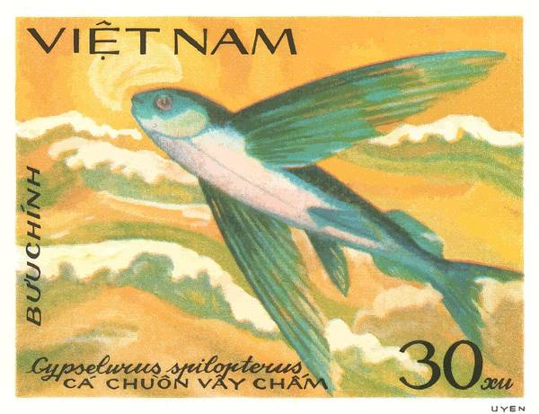 Wall Art - Digital Art - 1984 Vietnam Flying Fish Postage Stamp by Retro Graphics