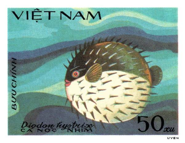 Reef Digital Art - 1984 Vietnam Spotted Porcupinefish Postage Stamp by Retro Graphics