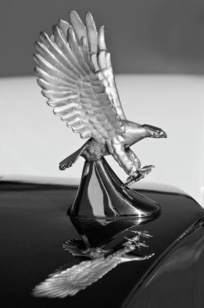 Photograph - 1986 Zimmer Golden Spirit Hood Ornament 3 by Jill Reger