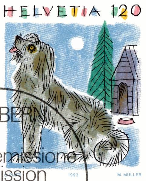 Wall Art - Digital Art - 1993 Switzerland Dog Postage Stamp by Retro Graphics