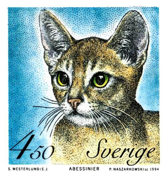 Feline Digital Art - 1994 Sweden Abyssinian Cat Postage Stamp by Retro Graphics