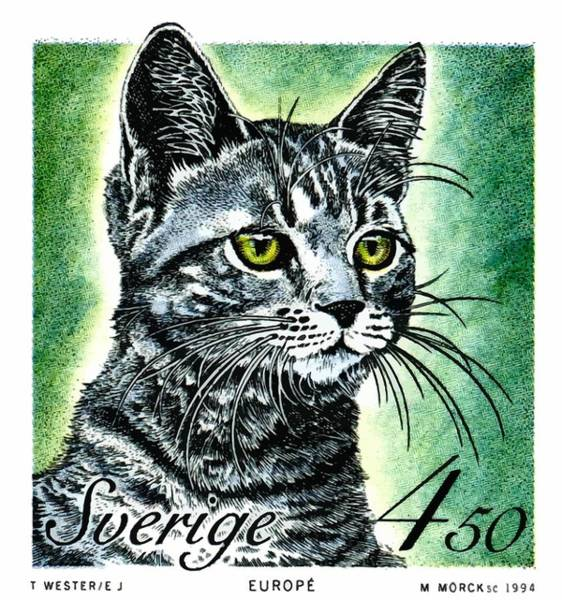Feline Digital Art - 1994 Sweden European Cat Postage Stamp by Retro Graphics