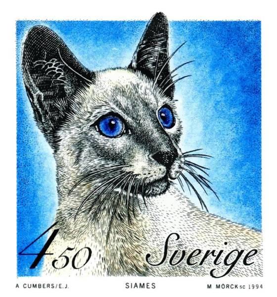 Feline Digital Art - 1994 Sweden Siamese Cat Postage Stamp by Retro Graphics