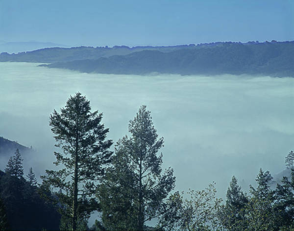 Photograph - 1b6321 Fog Fills Sonoma Valley Ca by Ed Cooper Photography