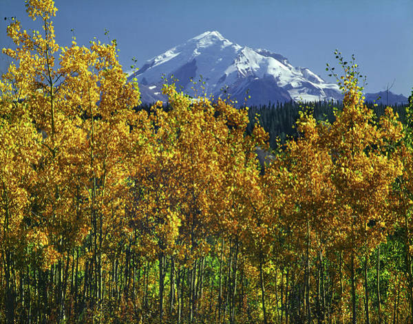 Photograph - 1m1733 Mt. Drum In Autumn by Ed Cooper Photography