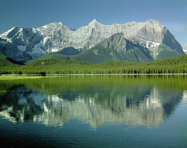 Photograph - 1m3118 Mt. Foch And Lower Kananaskis Lake by Ed  Cooper Photography