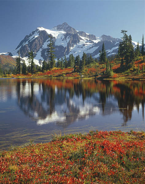 1m4208 Mt. Shuksan And Picture Lake Art Print