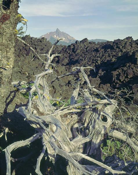 Photograph - 1m5412 Mt. Washington Over Lava Fields Wa by Ed Cooper Photography