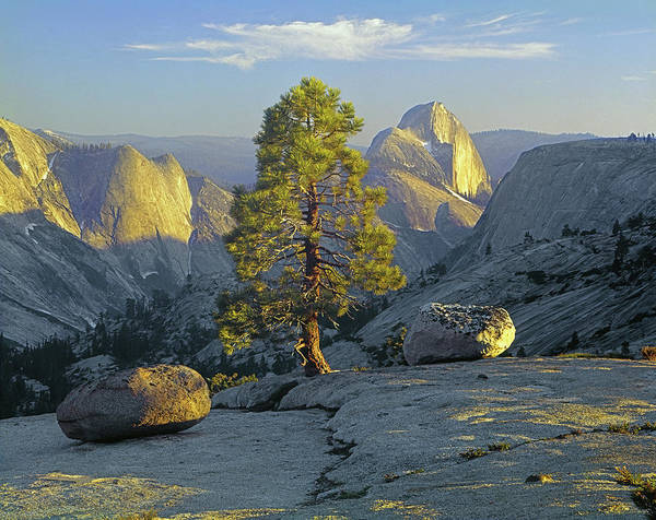 Photograph - 1m6505 Half Dome From Near Olmsted Point by Ed Cooper Photography