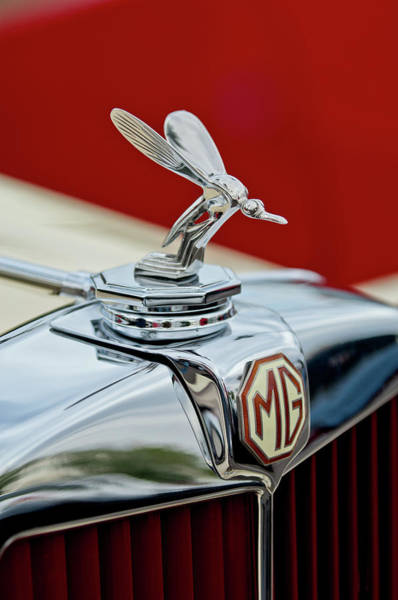 Tc Photograph - 1948 Mg Tc - The Midge Hood Ornament by Jill Reger