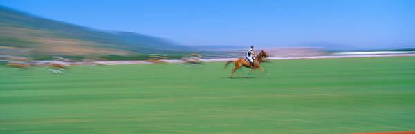 Hoof Photograph - 1998 World Polo Championship, Santa by Panoramic Images