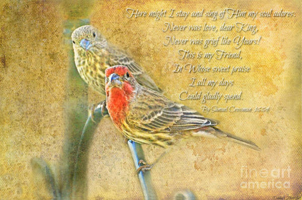 Wall Art - Photograph - A Pair Of Housefinches With Verse Part 2 - Digital Paint by Debbie Portwood