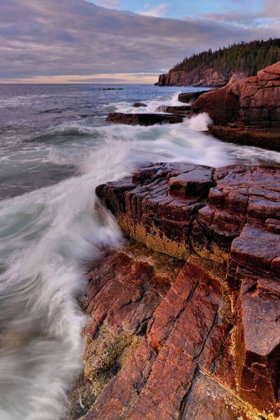 Wall Art - Photograph - Along The Acadia Coast by Stephen  Vecchiotti