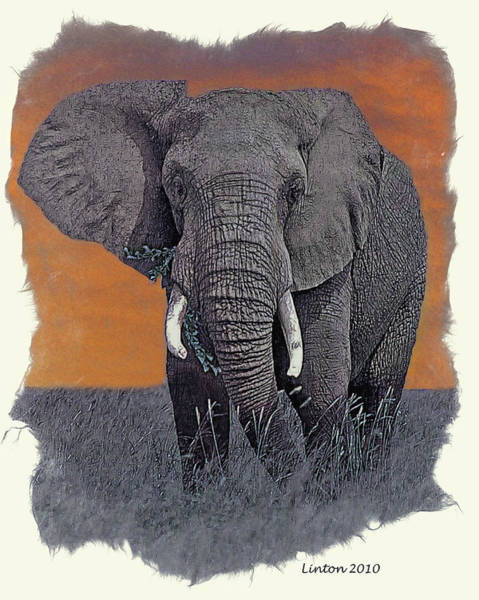 East Africa Digital Art - African Elephant by Larry Linton
