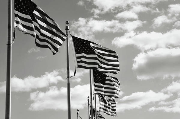 Photograph - American Flags In The Wind by Brandon Bourdages