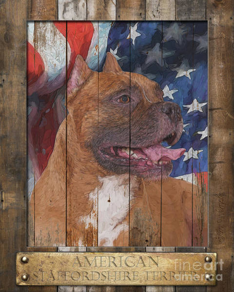 Digital Art - American Staffordshire Terrier Poster by Tim Wemple