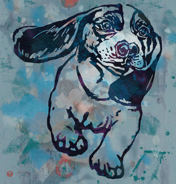 Furry Drawing - Animal Pop Art Etching Poster - Dog  by Kim Wang
