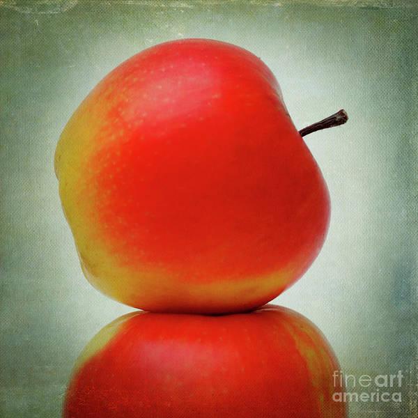 Stalk Photograph - Apples by Bernard Jaubert