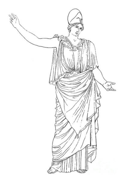 Drawing - Athena / Minerva by Granger
