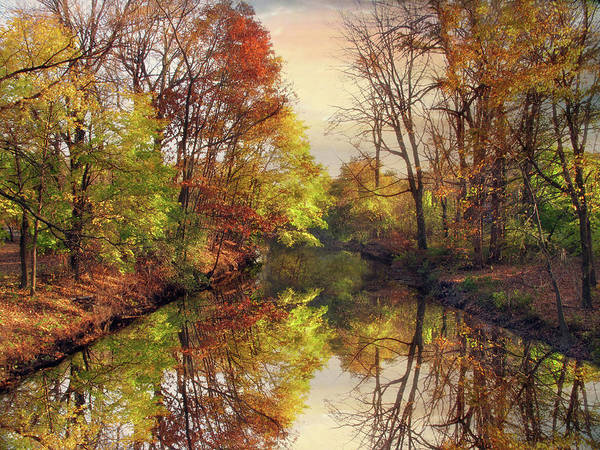 Photograph - Autumn Afternoon by Jessica Jenney