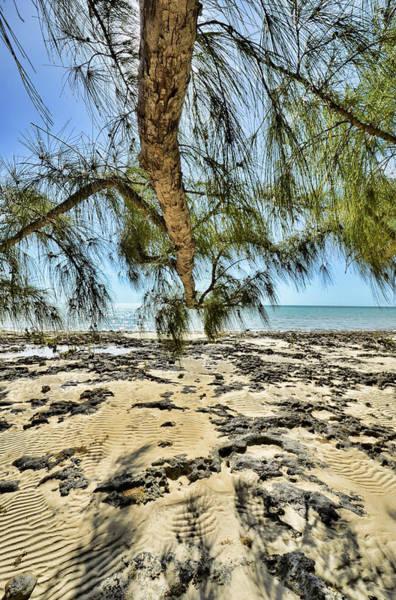 Photograph - Bahamian Scenery by Jeremy Lavender Photography