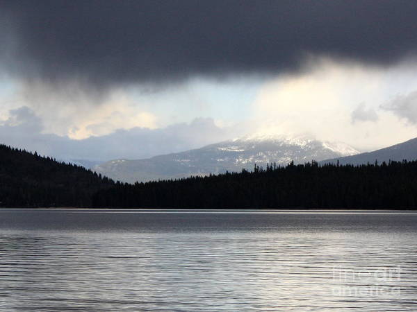 Priest Lake Photograph - Balance In Nature by Carol Groenen