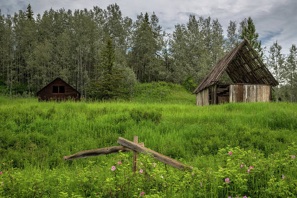 Photograph - Bc Homestead by Ryan Heffron