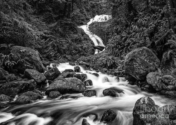 Wall Art - Photograph - Beautiful Bunch Creek Falls In The Olympic National Park Of Wash by Jamie Pham