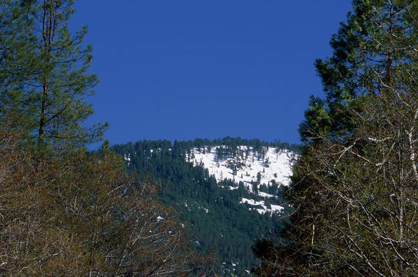 Wall Art - Photograph - Big Pine Mountain by Soli Deo Gloria Wilderness And Wildlife Photography