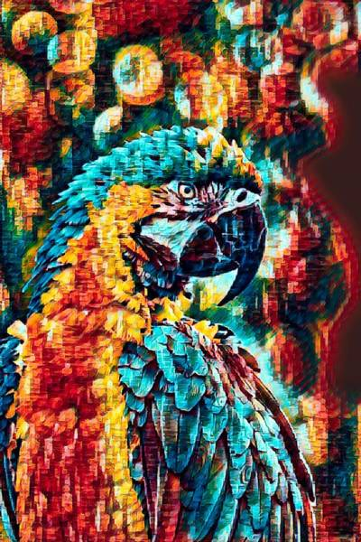 Wall Art - Photograph - Blue And Yellow Macaw As Seen By The Expressionist  by Robert Kinser