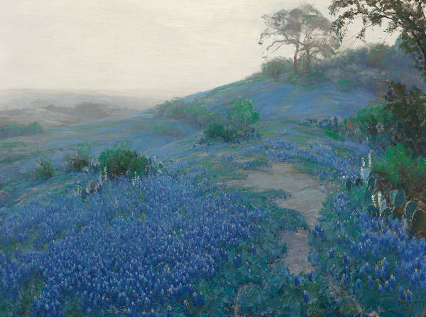 Painting - Blue Bonnet Field, Early Morning, San Antonio Texas by Julian Onderdonk