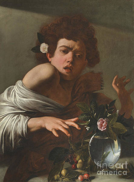 Bite Wall Art - Painting - Boy Bitten By A Lizard by Caravaggio