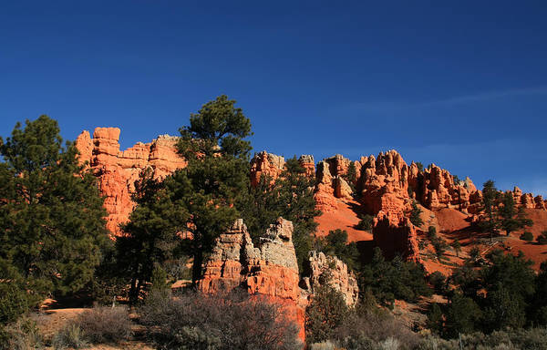 Photograph - Bryce Canyon  by Mark Smith