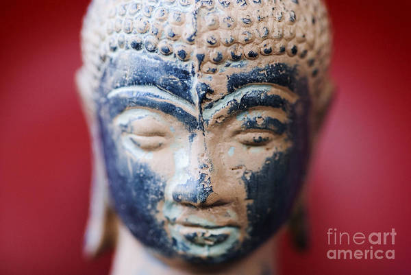 Adorn Photograph - Buddha Sculpture by Ray Laskowitz - Printscapes