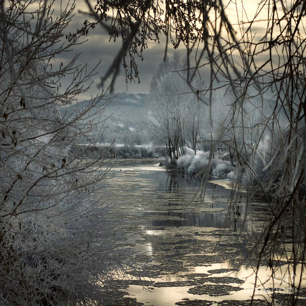 Wall Art - Photograph - by the frozen river Wye by Angel Ciesniarska