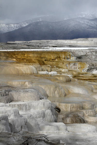 Photograph - Canary Hot Springs Yellowstone by Pierre Leclerc Photography