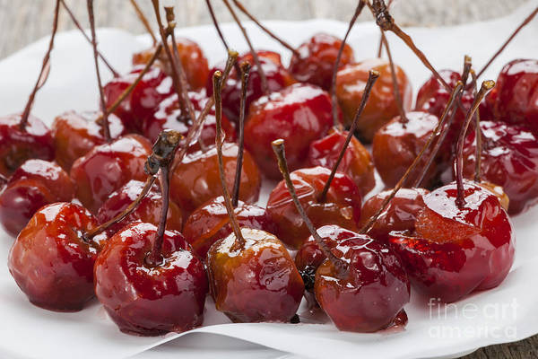 Glazed Wall Art - Photograph - Candied Crab Apples by Elena Elisseeva