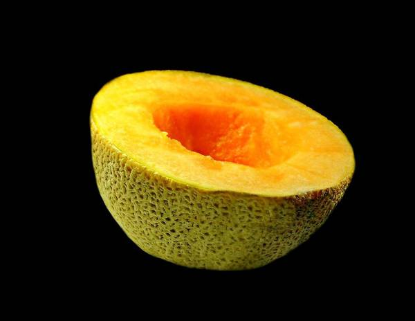 Wall Art - Photograph - Cantaloupe by Diana Angstadt