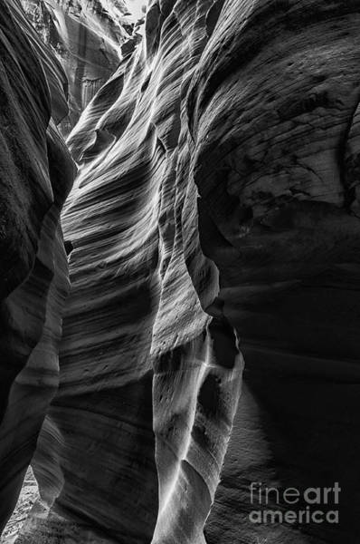 Photograph - Canyon X Slot Canyon by Thomas R Fletcher