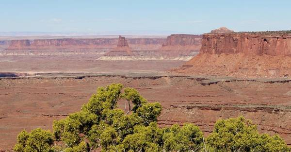 Photograph - Canyonlands View - 3 by Christy Pooschke