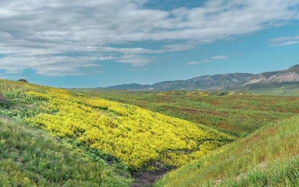 Wall Art - Photograph - Carrizo Plain by Joseph Smith